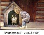 Girl And Small Dog  Dog House
