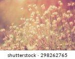 Grass Flower In  Pastel Style ...