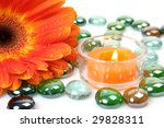 flower and candle | Shutterstock . vector #29828311