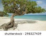 Divi Divi Trees On Eagle Beach...