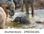 Stock photo baby elephant with mother play in cement ponds in the prairie safari 298336181