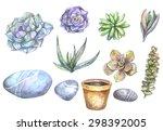 Watercolor Set Of Beautiful...