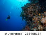 diving the wall  red sea  egypt | Shutterstock . vector #298408184