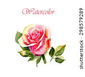 multicolored rose with leaves ... | Shutterstock . vector #298579289