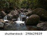 Jungle Stream  Panama