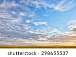 Landscape Of A Canola Field At...