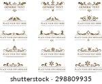 vector set  calligraphic design ... | Shutterstock .eps vector #298809935
