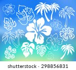 Tropical Objects. Leaf  Flower...