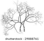 drawing of black branches on a...   Shutterstock . vector #29888761