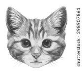 original drawing of cat.... | Shutterstock . vector #298907861