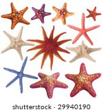 set of painted sea star... | Shutterstock . vector #29940190