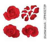 vector roses and petals set | Shutterstock .eps vector #299432729