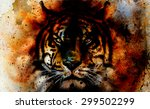 Tiger Collage On Color...
