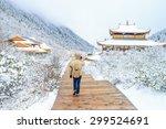 Traveler Walking On The Snow I...