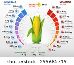 vitamins and minerals of corn... | Shutterstock .eps vector #299685719