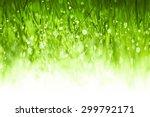 lush green grass background... | Shutterstock . vector #299792171