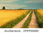 Summer Landscape With Country...