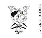 Owl Pirate  Nautical Poster ...