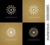 luxury beauty abstract flower... | Shutterstock .eps vector #300030881