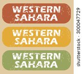 western sahara on colored... | Shutterstock .eps vector #300047729