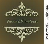 ornamental vector floral element | Shutterstock .eps vector #300063809