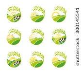 farm isolated green logo... | Shutterstock .eps vector #300145541