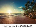 landscape of paradise tropical... | Shutterstock . vector #300184409