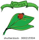 drawn ladybird on leaf with... | Shutterstock .eps vector #300215504