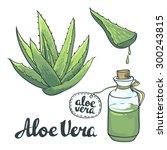 natural vector aloe vera... | Shutterstock .eps vector #300243815
