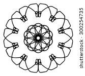 vector illustration circle... | Shutterstock .eps vector #300254735