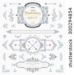 set of vintage decorations... | Shutterstock .eps vector #300294854