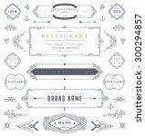 set of vintage decorations... | Shutterstock .eps vector #300294857