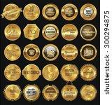 premium  quality retro vintage... | Shutterstock .eps vector #300294875