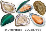 set of mussels and oysters on a ... | Shutterstock .eps vector #300387989
