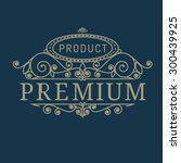 premium product  element in... | Shutterstock .eps vector #300439925