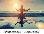 silhouette of beautiful girl... | Shutterstock . vector #300505259
