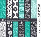 vector black sea foam green 12... | Shutterstock .eps vector #300507809