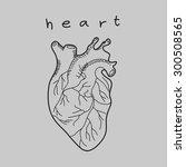 heart doodle hand drawn | Shutterstock .eps vector #300508565