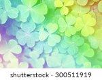 Lucky Clovers With Rainbow.