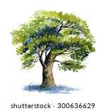 Oak Tree Watercolor
