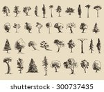 trees sketch set  vintage... | Shutterstock .eps vector #300737435