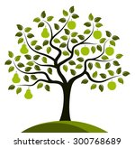 vector apples and pears on one... | Shutterstock .eps vector #300768689