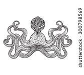 staring octopus stylized...   Shutterstock .eps vector #300798569
