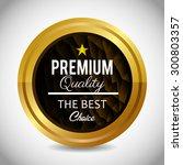 premium quality label design ... | Shutterstock .eps vector #300803357