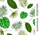 vector seamless pattern with... | Shutterstock .eps vector #300807005