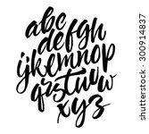 vector handwritten brush script.... | Shutterstock .eps vector #300914837