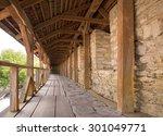 antiquity beautiful big... | Shutterstock . vector #301049771