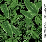 Tropical Leaves  Night Jungle....