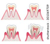 the illustration of the tooth | Shutterstock . vector #301069709