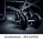 dumbbells | Shutterstock . vector #301133501